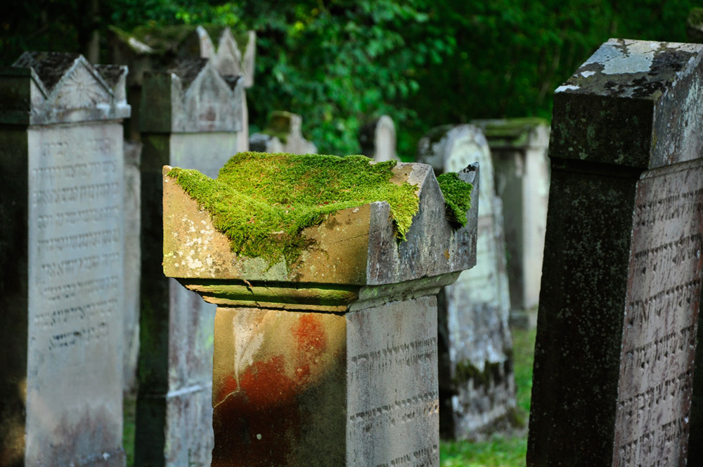 Judenfriedhof_Freudental_09-2016_246_WEB
