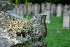 Judenfriedhof_Freudental_09-2016_068_WEB