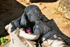 Friedhof_Nuernberg_270816_020_WEB