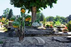 Friedhof_Nuernberg_270816_034_ret_WEB