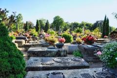 Friedhof_Nuernberg_270816_164_HDR_WEB