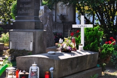 Friedhof_Nuernberg_270816_110_Web