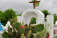 Galapagos_Isabela_0507_WEB