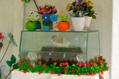 Galapagos_SCruz_230517_0409_WEB