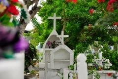 Galapagos_SCruz_230517_0385_WEB