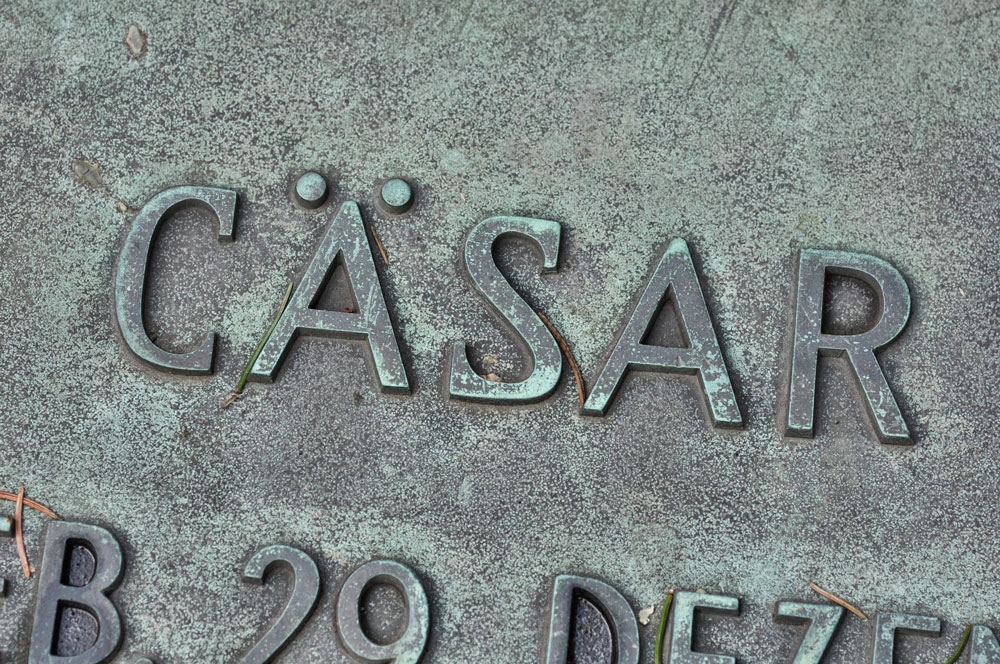 Hamburg_Friedhof_160917_0546_WEB