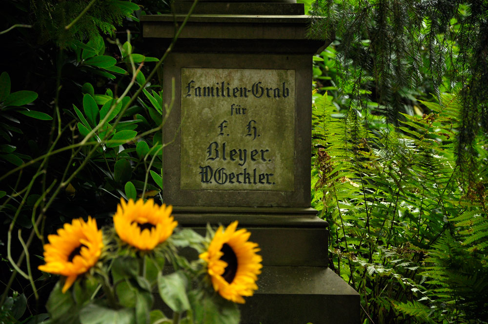 Hamburg_Friedhof_170917_0230_WEB