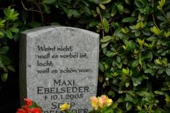 Hamburg_Friedhof_160917_0453_WEB