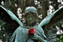 Hamburg_Friedhof_160917_0558_WEB