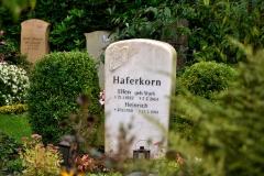 Hamburg_Friedhof_170917_0352_WEB