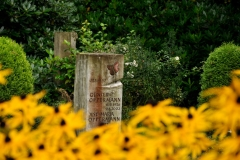Hamburg_Friedhof_170917_0353_WEB
