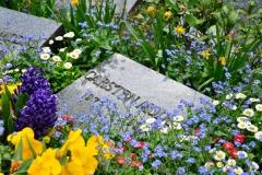 Der Heilbronner Hauptfriedhof im Frühling
