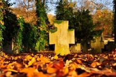 Nikolaifriedhof im Herbst (Schwäbisch Hall)