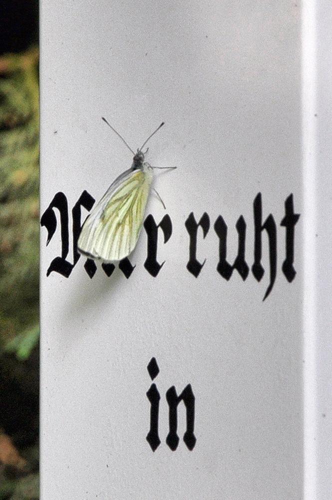 Friedhof_Heinsberg_NRW_005_HDR_WEB