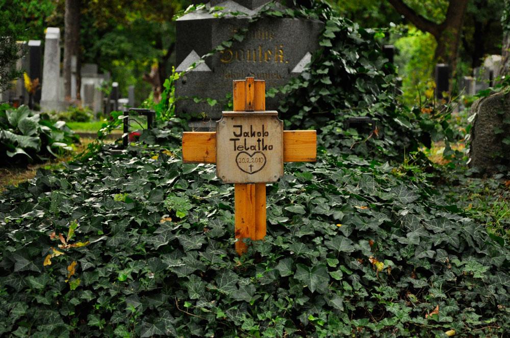 Zentralfriedhof_WIEN_10-2016_0706