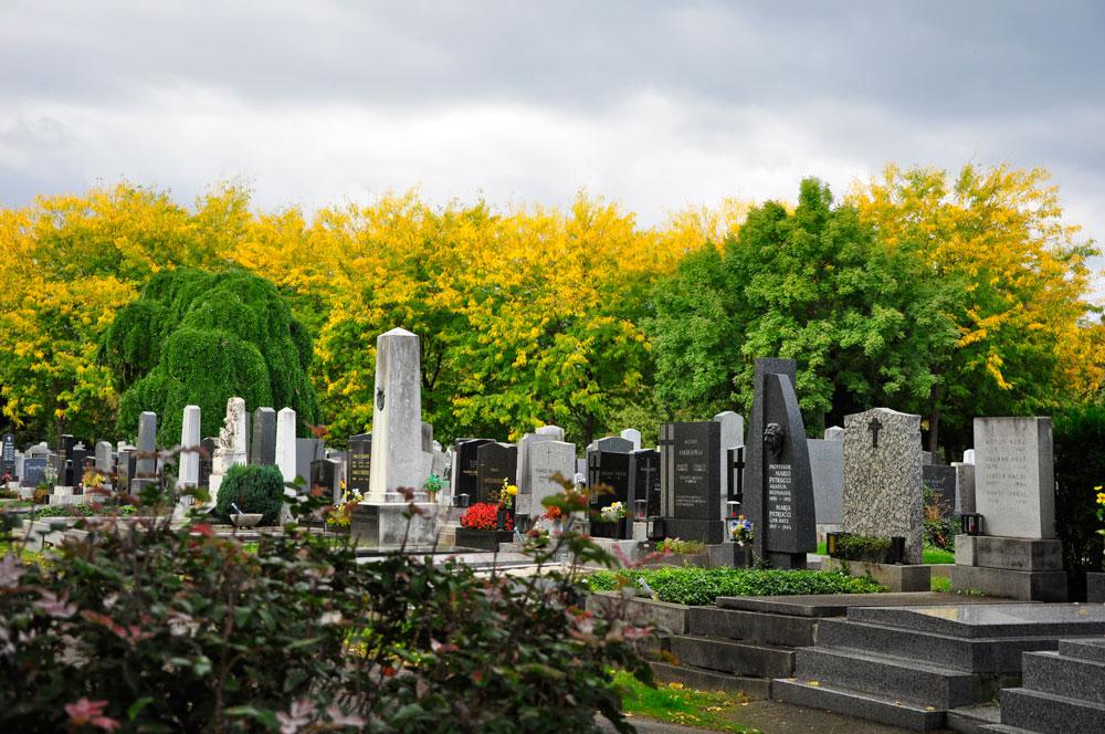 Zentralfriedhof_WIEN_10-2016_1002