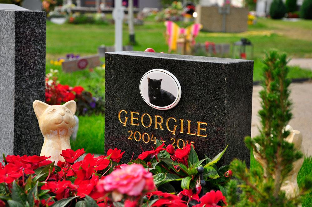 Zentralfriedhof_WIEN_10-2016_1234