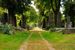 Zentralfriedhof_WIEN_10-2016_0548