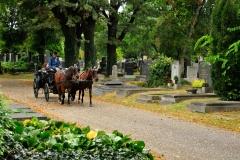Zentralfriedhof_WIEN_10-2016_0784
