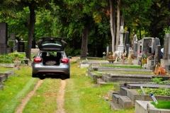 Zentralfriedhof_WIEN_10-2016_0836