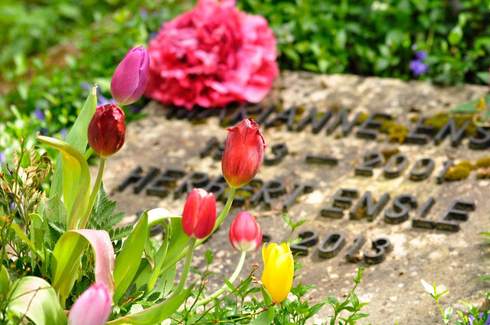 Heilbronner Hauptfriedhof im Fruehling