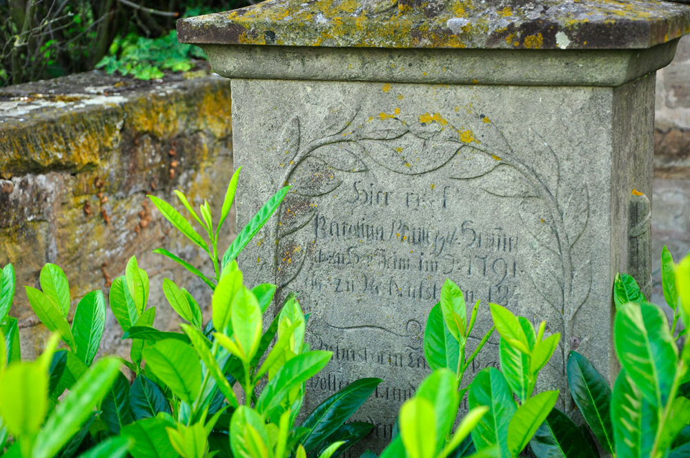 Friedhof_Michaelsberg_BAWU_270716_133_WEB