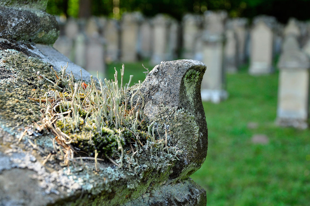 Judenfriedhof Freudental