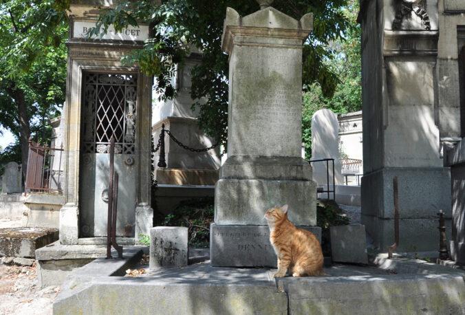 Katze Friedhof Père-Lachaise, Paris